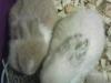 img_20120525_065559-1