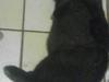 img_20120602_123632-1